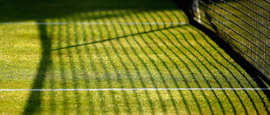 Grass court shadow at The Queen's Club