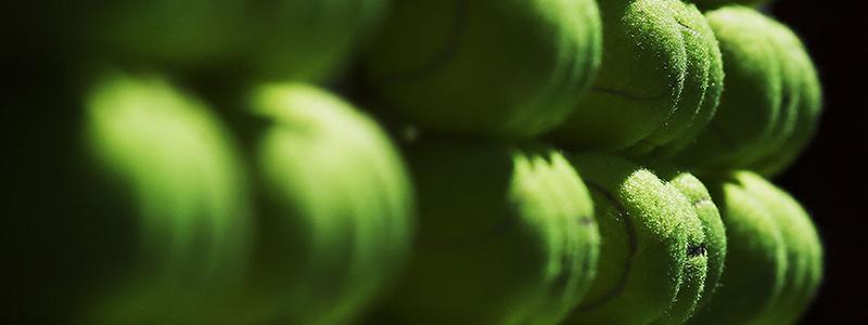 Generic tennis balls image