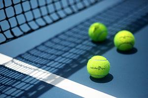 Tennis net and balls