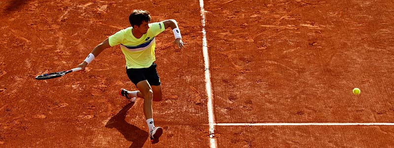 Aljaz Bedene in action at the 2017 French Open